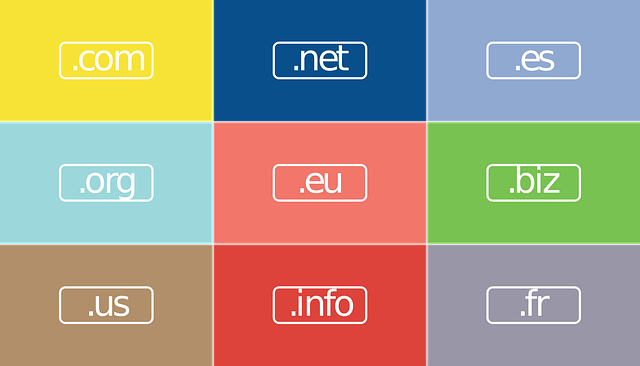 Domain Name And Hosting – What's The Difference?