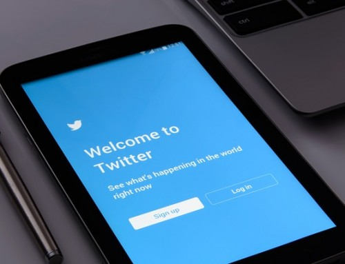 How To Build Your Twitter Following In 5 Easy Steps!